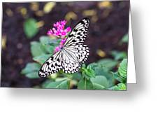 Rice Paper Butterfly Opulent Amenities 2 Greeting Card