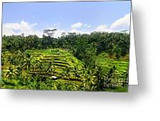 Rice Terrace In Bali Greeting Card by Lars Ruecker