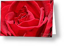 Rich Red Greeting Card
