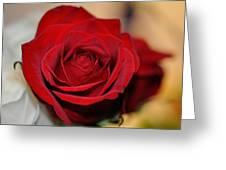 Rich Redness Greeting Card