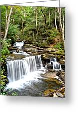 Ricketts Glen Delaware Falls Greeting Card