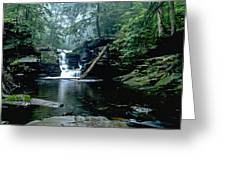 Ricketts Glen Falls 016 Greeting Card