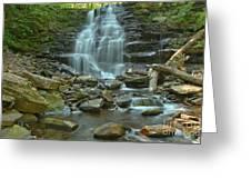 Ricketts Glen Waterfall Canyon Greeting Card