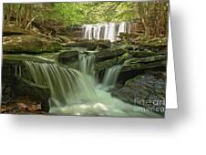 Ricketts Glen Waterfall Cascades Greeting Card