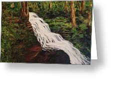 Ricketts Glen Waterfall Greeting Card