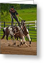 Ride Them Cowboy Greeting Card