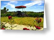 Rideau Vineyards Solvang California Greeting Card