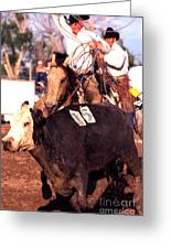 Riding And Roping Greeting Card