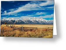 Riding The Fence Greeting Card