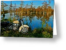 Riding The Mississippi Delta Greeting Card