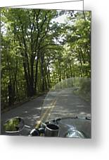 Riding The Woods Of Alabama Greeting Card