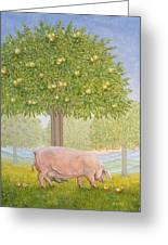 Right Hand Orchard Pig Greeting Card