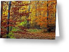 Right Place Right Time Greeting Card