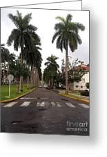 Right Side El Prado Sidewalk Greeting Card