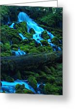 Right Side Of Clearwater Falls Greeting Card