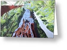 Rim Fire Yosemite  Greeting Card