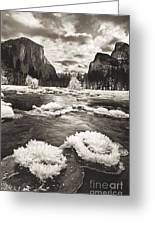 Rime Ice On The Merced In Black And White Greeting Card