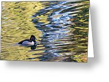 Ring-neck Reflections Greeting Card