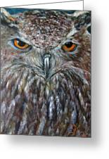 Rings Of Fire, Owl Greeting Card