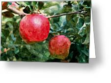 Ripe Red Apples On Tree Greeting Card
