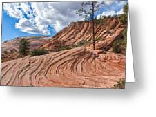 Rippled Rock At Zion National Park Greeting Card