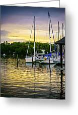 Ripples At Sunset Greeting Card by Brian Wallace
