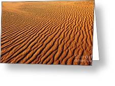 Ripple Patterns In The Sand 1 Greeting Card