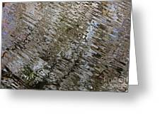 Ripples In The Swamp Greeting Card