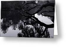 Ripples Of Black And White Greeting Card