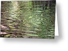 Ripples On Florida River Greeting Card