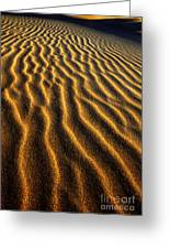 Ripples Oregon Dunes National Recreation Area Greeting Card