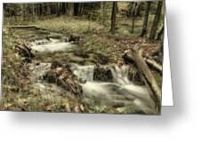 Ripplin' Waters Greeting Card