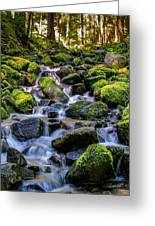 Rippling Rainforest Greeting Card