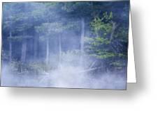 Rising Mist Greeting Card