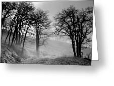 Rising Mists In The Bald Hills Greeting Card