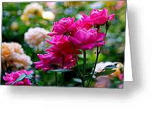 Rittenhouse Square Roses Greeting Card