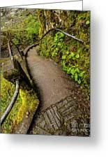 Exploring Columbia River Gorge - Highway 30 Greeting Card