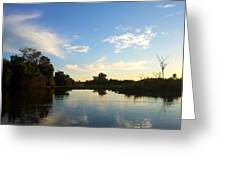 River And Pantanal Greeting Card