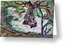 River And Plane Tree Greeting Card