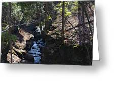 River Beneath The Trees Greeting Card