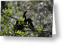 River Bird Greeting Card