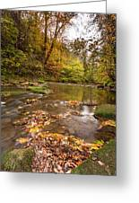 River Blyth In Autumn Vertical Greeting Card