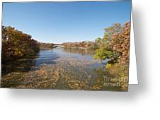 River Crossing Greeting Card