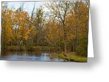 River In Autumn Greeting Card by Rhonda Humphreys