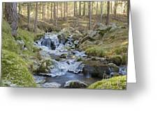 River In The Mountain Greeting Card
