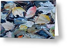 River Leaves Greeting Card