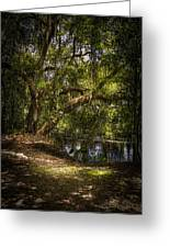 River Oak Greeting Card by Marvin Spates