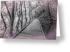 River Of Dreams Greeting Card