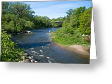 River Passing Through A Forest, Beaver Greeting Card