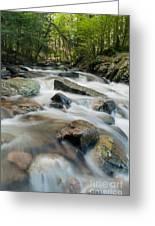 River - Rapids Above Kent Falls Greeting Card